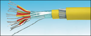 Steel Wire Armored Multipair Extension Cable